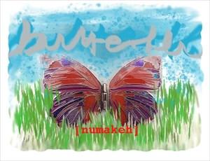 ButterflyMigrationRace1