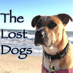 The_Lost_Dogs