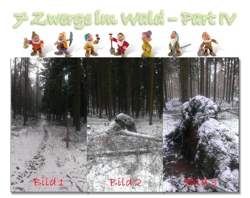 7 Zwerge im Wald - Part IV