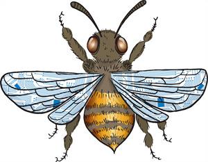 Tech-Bee
