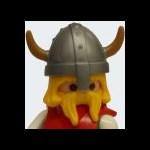 Cache Viking