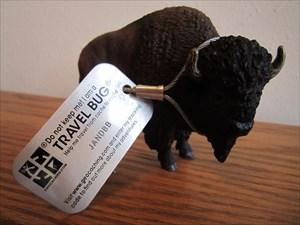 JANDBB Buffalo Bob