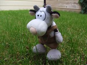 Eisenmann's Cow