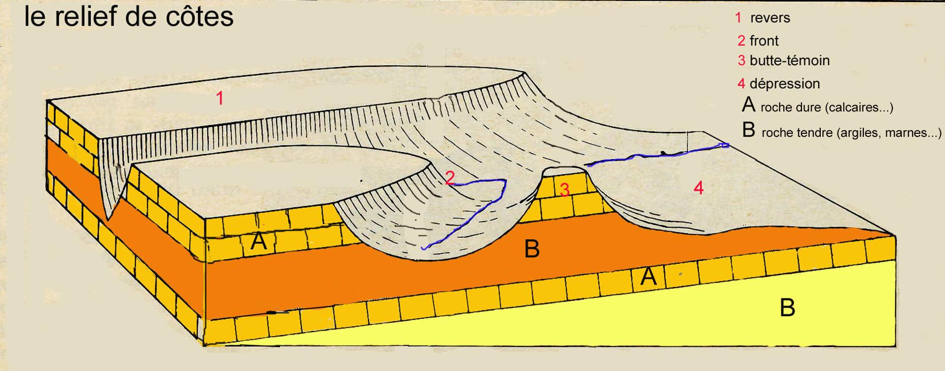 Relief de côtes