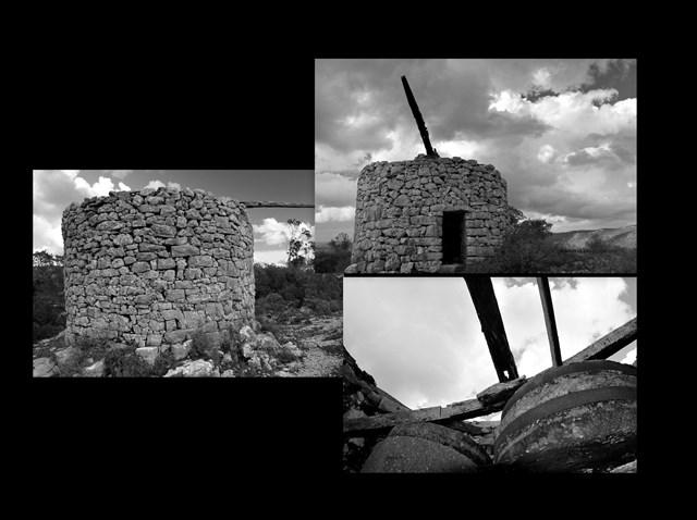 Black & White2.jpg