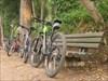 Houve bike para todos os gostos; verdes,