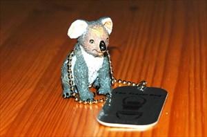 Kate The Koala