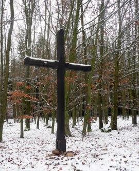 Sukovatý kříž