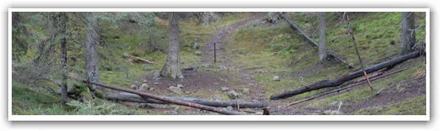 Dödisgrop vid Pålamalm