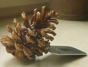 Das Bockerl (pine cone)