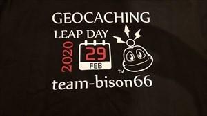Leap Day 2020 T-Shirt 1
