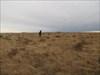 BVPete on the prairie