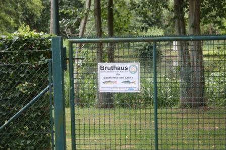 Bruthaus2