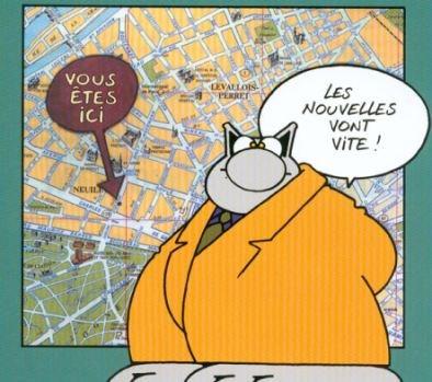 avatar de Le Chat 60