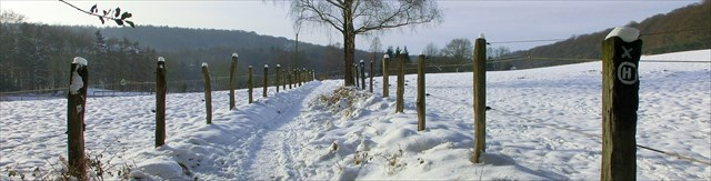 Bommerholz
