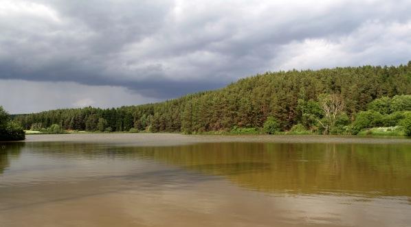 Velký Pardouskův rybník s východním břehem
