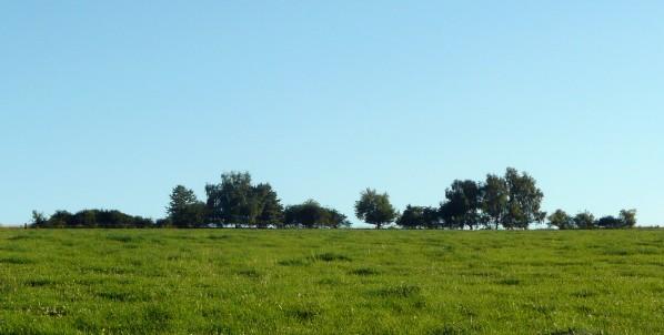 Stromky na hranici