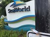 Passing by Seaworld