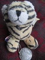 der verlorene Tiger