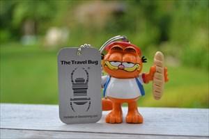 2013 Garfield