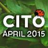 CITO 2015