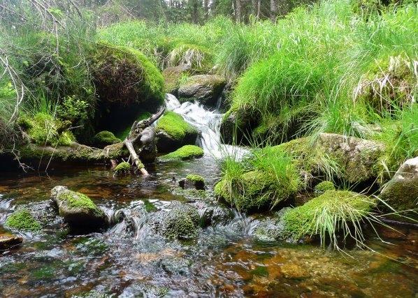 Potok při jihovýchodním úpatí