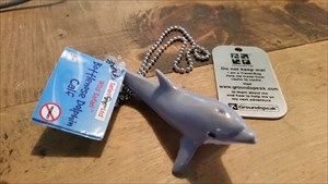 Ric the Caching Dolphin!
