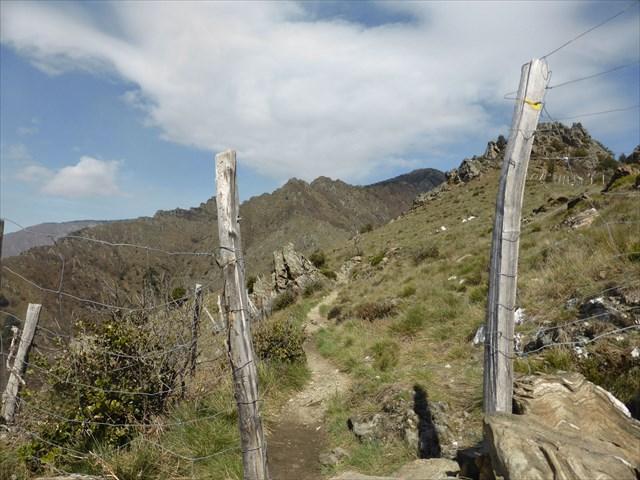 Géocaching Mont Aigoual