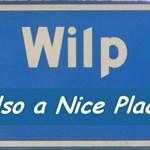 Team WilP