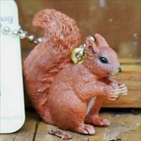 Eddie das Eichhörnchen