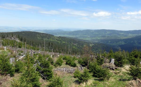 Výhled do Úhlavského údolí