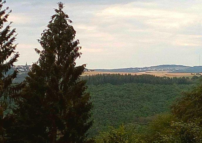 Zwei-Dörfer-Blick mit Türmen und Bäumen