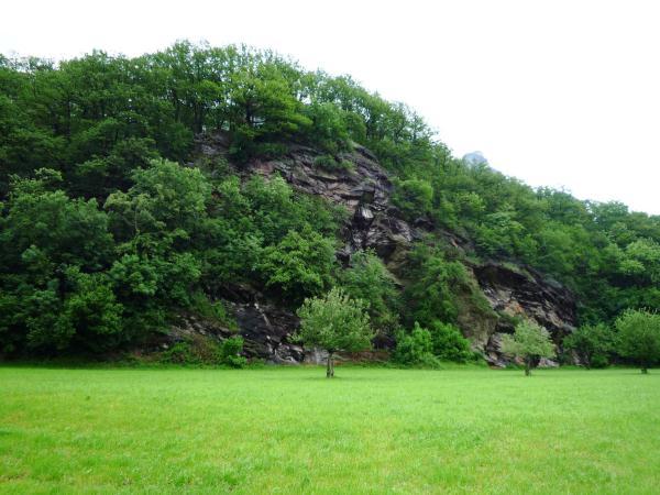 Tiergarten_Mels