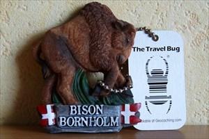 Travel-Bison