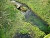 O tapete de água