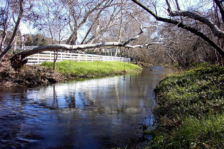 Alamitos Creek