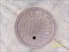 BCP069 Beaumont Survey Monumnet Cover