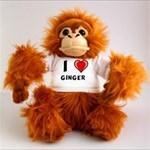 ginger_4x4