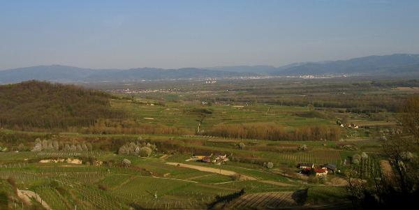 Blick vom Lenzenberg