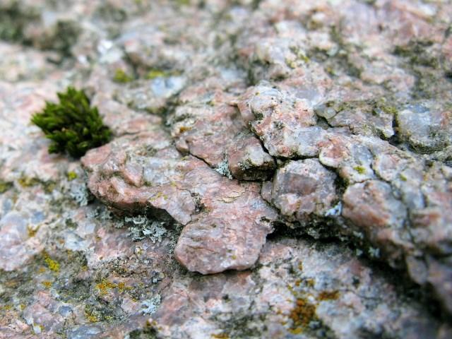 Granit Bestandteile gc57av3 rapakiwi oder was ist ein schlechter stein earthcache