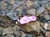 Flip flop on the rocky stream edge Stream in Rosevale New Brunswick