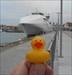 duckie2 In Visby Haarbour