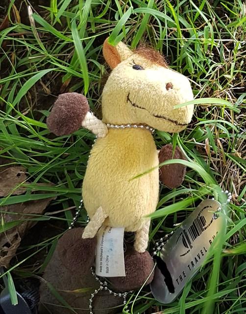 Ass stuffed on the grass