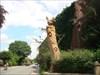 Great squirrel sculpture