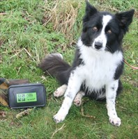 Bramble with Her first cache