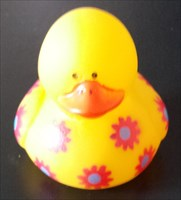 Duck on Tour - Jules