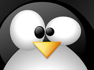 Linux_Penguin_freecomputerdesktopwallpaper_1024