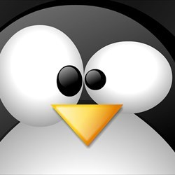 Linux_Penguin_freecomputerdesktopwallpaper_1024