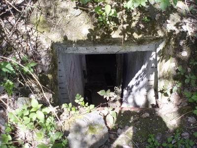 bunkr 1