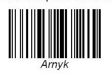 Arnyk